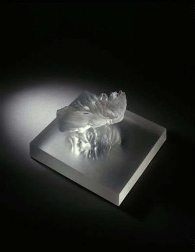 Portrait of Beethoven in Cast glass